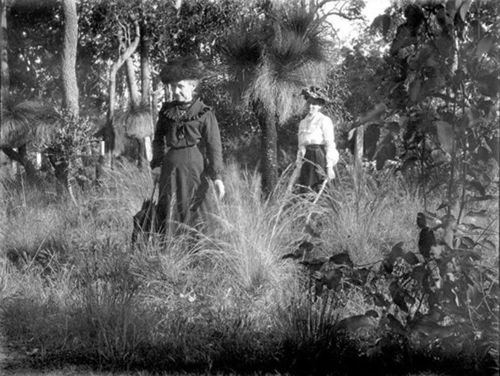 Ladies Perth bushland 1900; State Library of WA collection